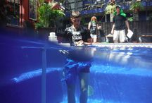 April 2016 A-MAZE-IN CABO RACE / Fun pictures of our guests during our events.