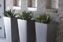 Dekor:Növények