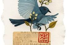 Beautiful Birds / by Janine Lubker