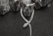 Fashion & animals