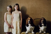 Doggies / by Mary Menge