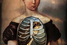 Cabinet de curiosités, anatomy & bones / Cabinet of curiosities anatomy, skelletton,  faune et flore... weird blood bones l / by Oledie Hanouna