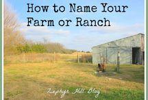 naming your farm