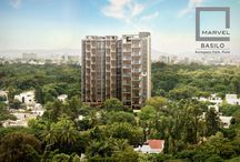 Marvel Basilo, Koregaon Park, Pune