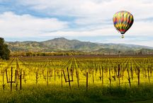 The Best Napa & Sonoma / Wine, food, pampering--some of my faves in North California - Deborah Coonts, deborahcoonts.com