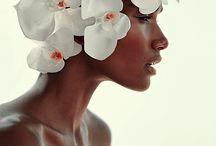 Diana Wrayburn