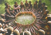 Diversity + Unity  / Always focus on the ties that binds us together.