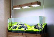 Aquarium Fixture Hood