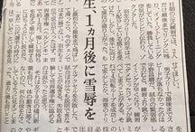 記事 article