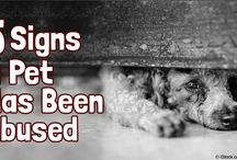 Animal Abuse is WRONG!