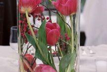kwiaty, kompozycje, ogód