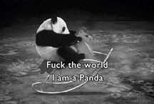 Pandas and other things I enjoy / by Stephanie Souza
