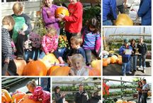 """Our Annual Pumpkin Contest! / We started our Pumpkin Contest as a way to encourage kids to garden but, I gotta tell you, the adults are having way too much fun trying to get their name onto the """"Pumpkin King Trophy""""."""