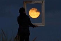 the moon / by morgan mcginn