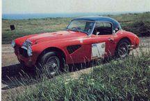 Austin Healey Rally Cars / by Bryan Rasch