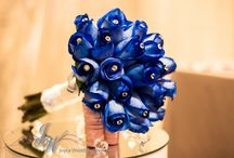 royal blue rose