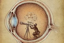Carla lyle Optometry