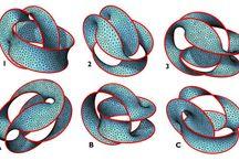 membrane & bending