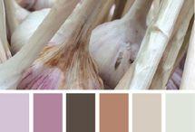 Kleur palletten