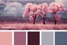 Renk uyumu