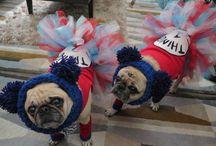 Puggie Costumes