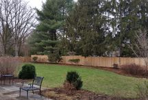 Cedar Privacy Fence and Lattice Fence Project