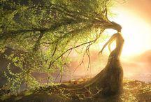 Nature fairytale pics
