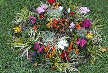 grabbepflanzung im herbst
