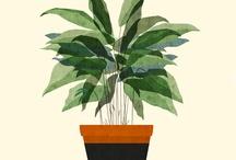 native plant sale logo inspiration