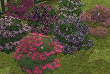 TS2CC - Garden Center