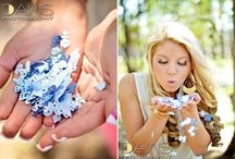 Photography (Posing): Maternity/ Announcement / Gender Reveal Announcing Pregnancy Maternity / by Rachel Canfield