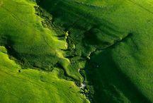 Colour od Nature