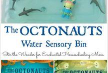 Sensory bins / Sensory activities Www.developot.com.au