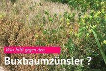 Reiseziele / Garten