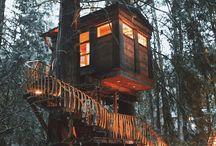 Case sugli alberi / Meraviglie