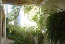 Coberturas de Bambu