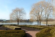 The Chicago Botanic Gardens / Allen Frantzen enjoyed The Chicago Botanic Garden on a sunny February day.  He loves to come here, walk around and take in the staggering beauty.