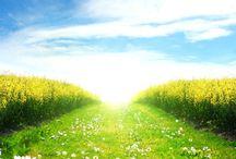 imagenes hermosas relajantes tiernas / todo tipo de imagenes para relajarse