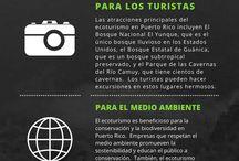 Ecoturismo /viajes