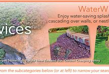 Crevice and Rock Garden Plants / Cracks, Crevices, Nooks, Crannies, Rock Gardens are our specialty! STEPABLES can go just about anywhere you have a tight spot or drought conditions.