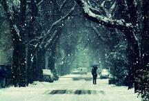 winter is my favorite / by Anastasia Shakhaeva