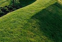Earth/ lawn spaces