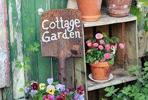 cotage garden / cottage garten