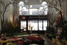 Flower Shop AU