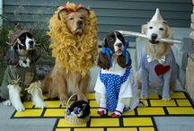 Doggie Costumes