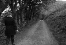 Oak Tree Lane / take me for a stroll through the countryside.......along an  Oak Tree Lane......