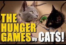 EFL - reading - Hunger Games