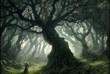 Slumbering Woods