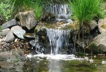 cascade de jardin / cascades