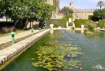 Cordoba, Andalucia, Spain / The lovely city and province of Cordoba